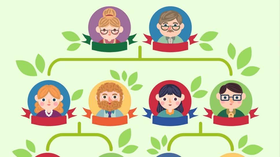Döbbenetesen sokoldalú családfa szerkesztő szoftver