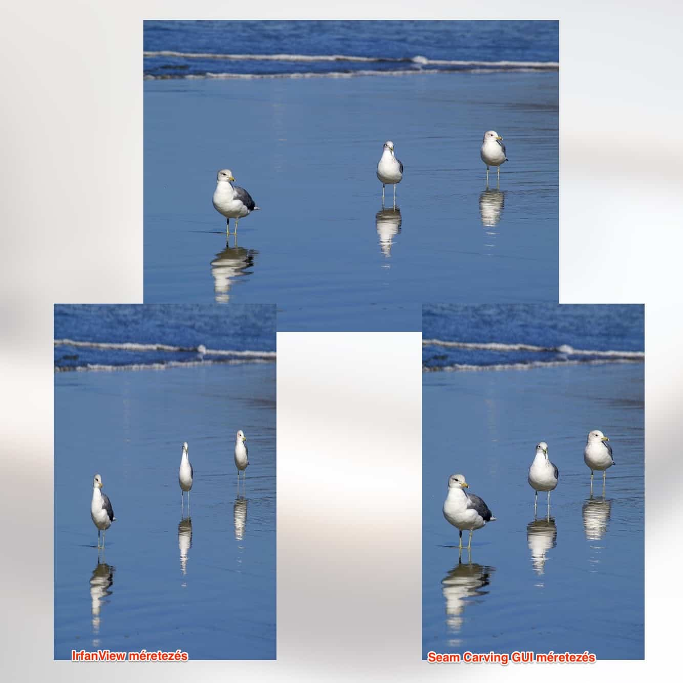 seam carving We present a simple image operator called seam carving that supports content-aware image resizing for both reduction and expansion a seam is an optimal 8 -connected.
