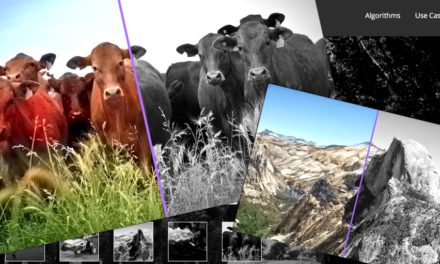 Fekete-fehér fotók színezése automatikusan, online