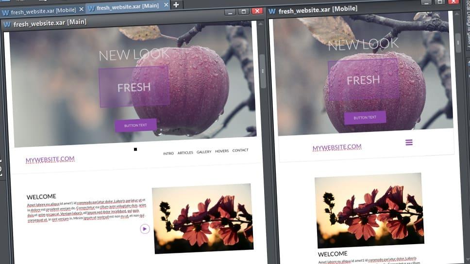 Xara Designer Pro X365: fotóretusálástól a webszerkesztésig